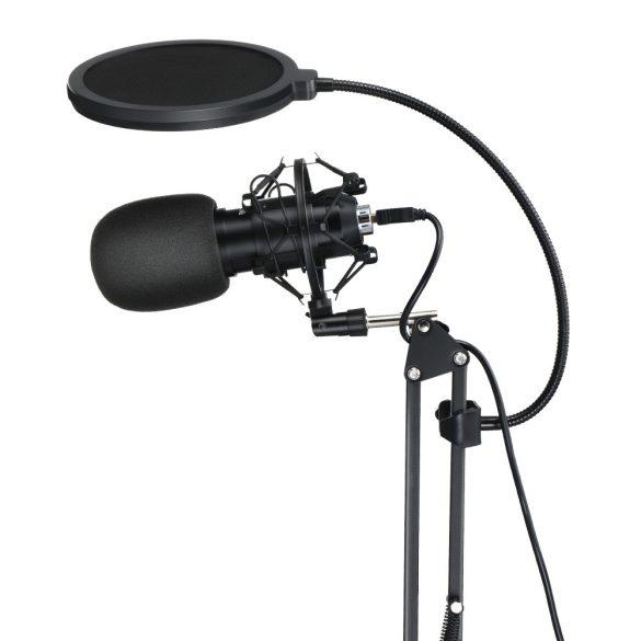 BlitzWolf BW-CM2 - USB-Kondensatormikrofon + Pop-Filter + Mikrofonhalterarm